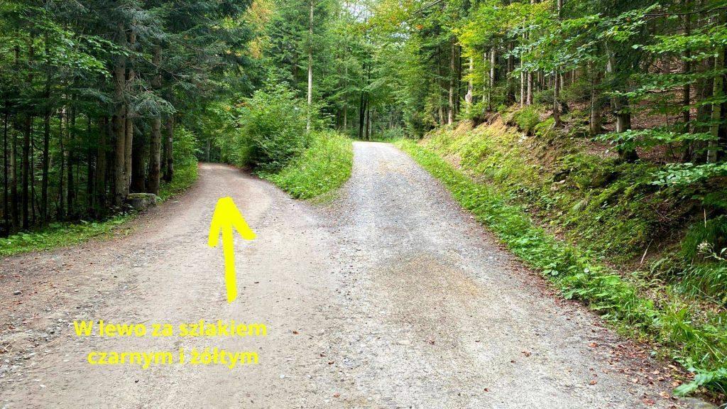 Szlak na przełęcz Jałowiecką